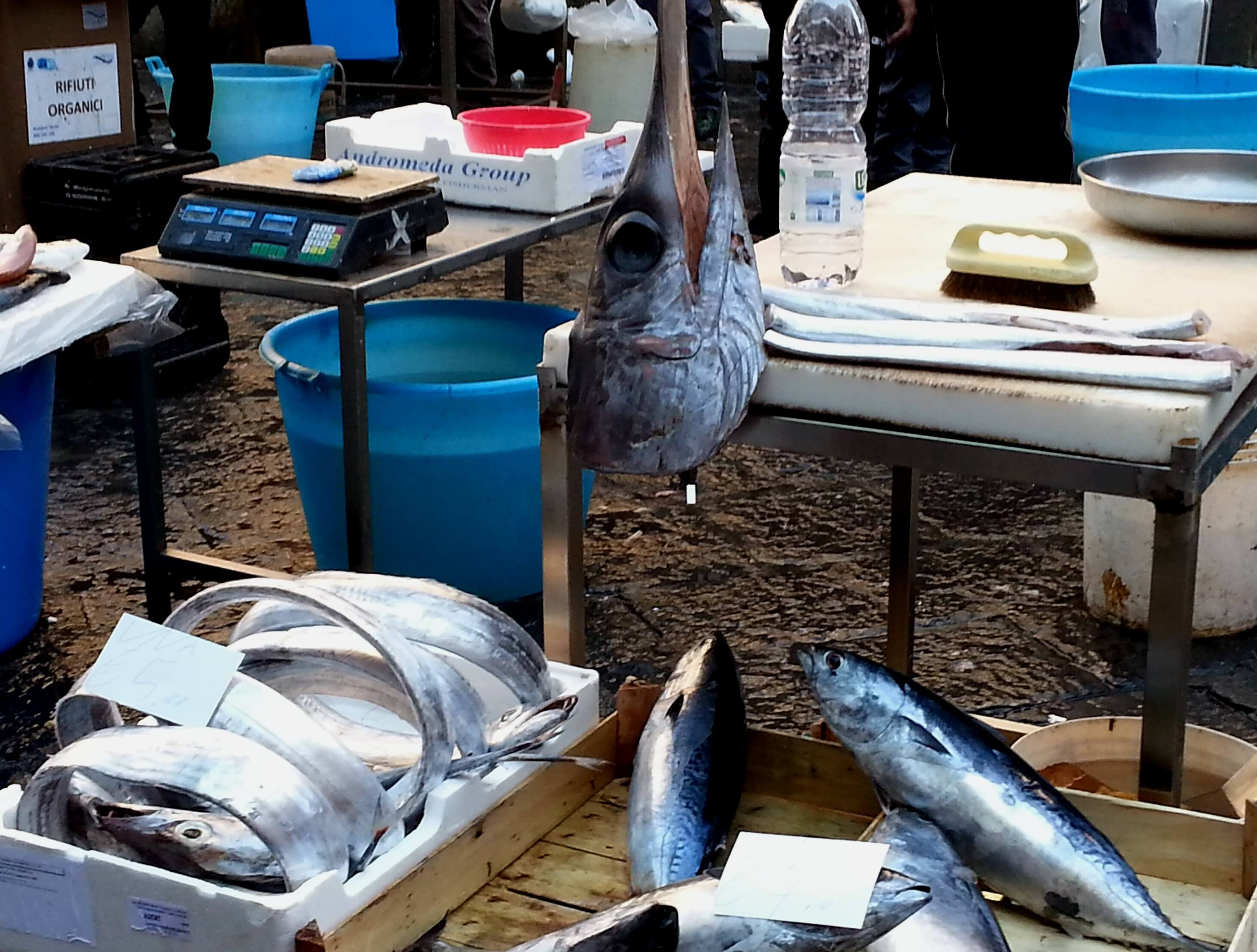 week-end_Catania_fish_market